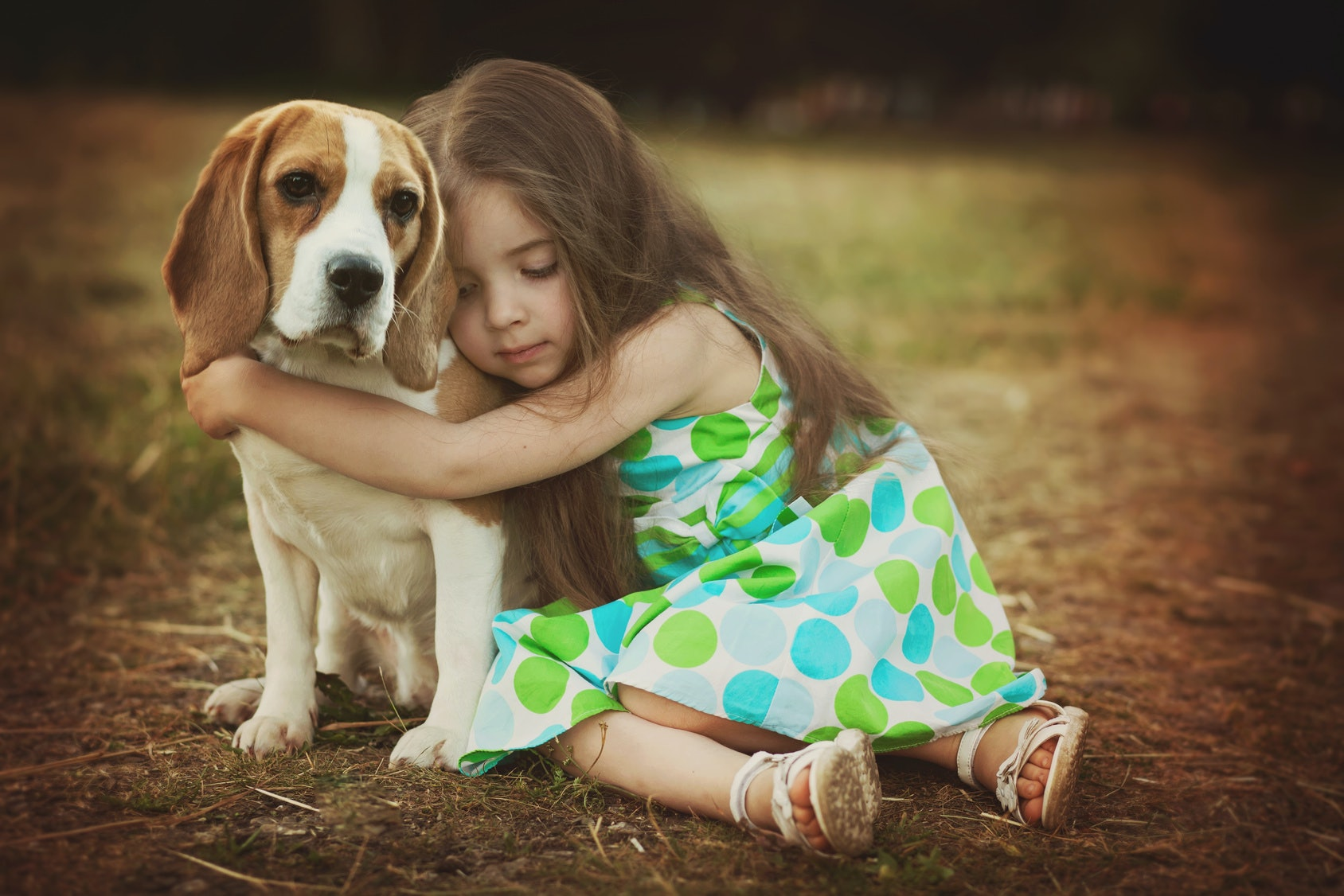 Kid Friendly Dog Breeds