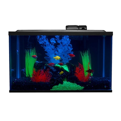 GloFish Fish Tank Kit