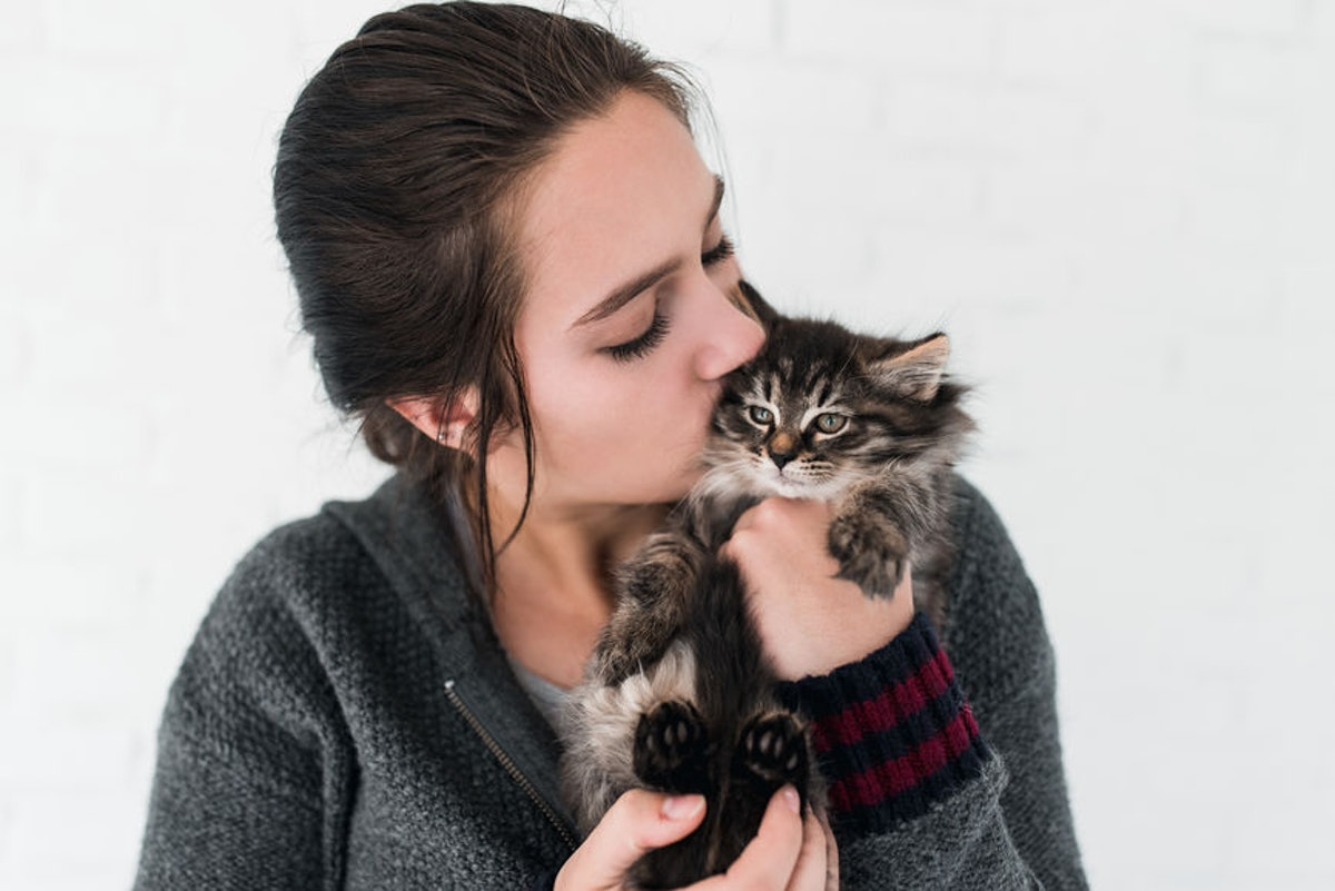 6 Signs Your Cat Loves You, Rather Than Tolerates You, According To Experts