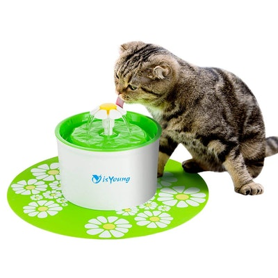 isYoung Cat Fountain 1.6L Automatic Pet