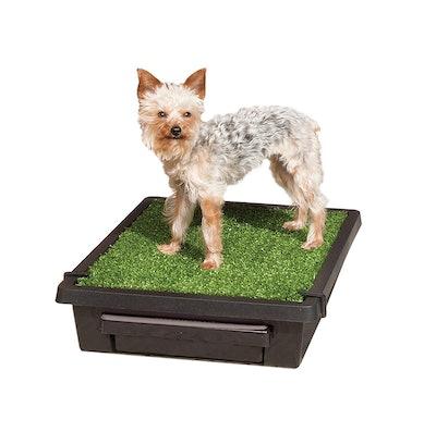 PetSafe Pet Loo Portable Indoor/Outdoor Dog Potty