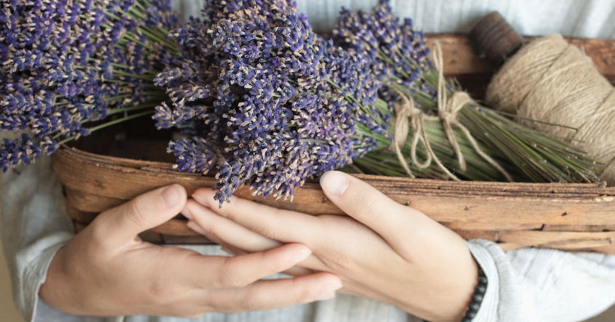 The Herb That Goes With Your Zodiac Sign Will Help Awaken Your Inner Witch