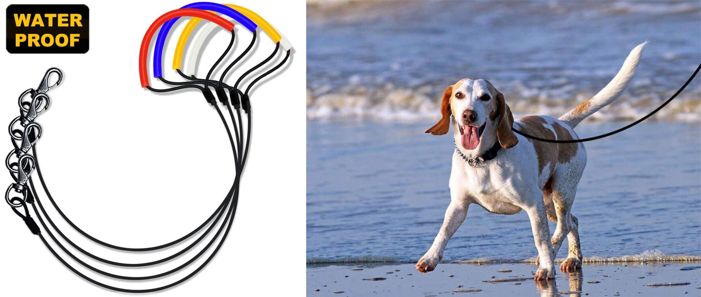 "10 ft x 1/"" Dog leash AMAZING Value Top Quality BLUE!"