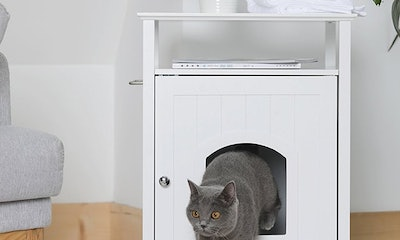Merry Casual Cat Nightstand Pet House