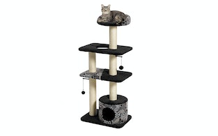 The 5 Best Cat Trees For Large Cats