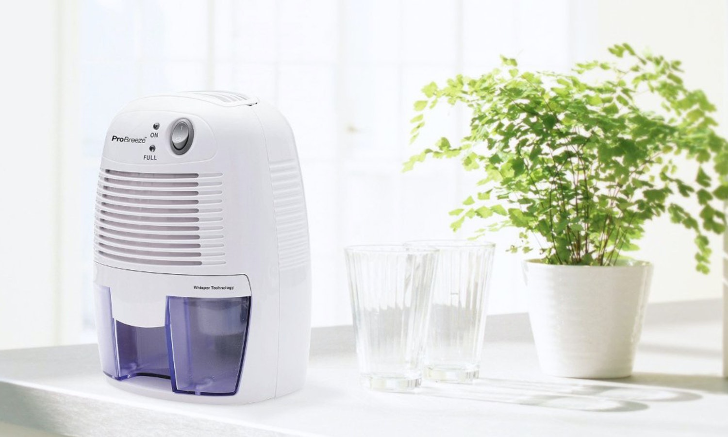 The 5 Best Small Dehumidifiers