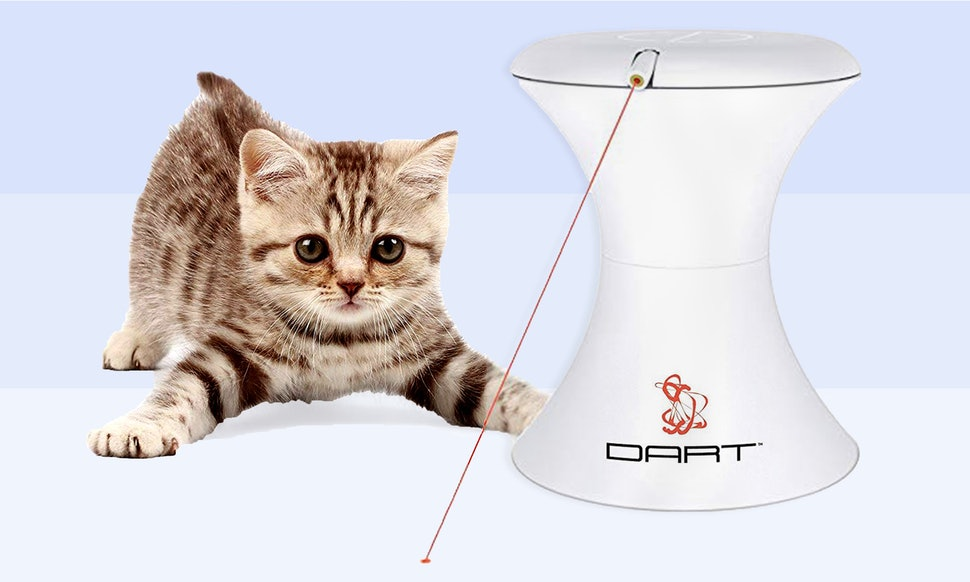 Best Interactive Toys for Cats