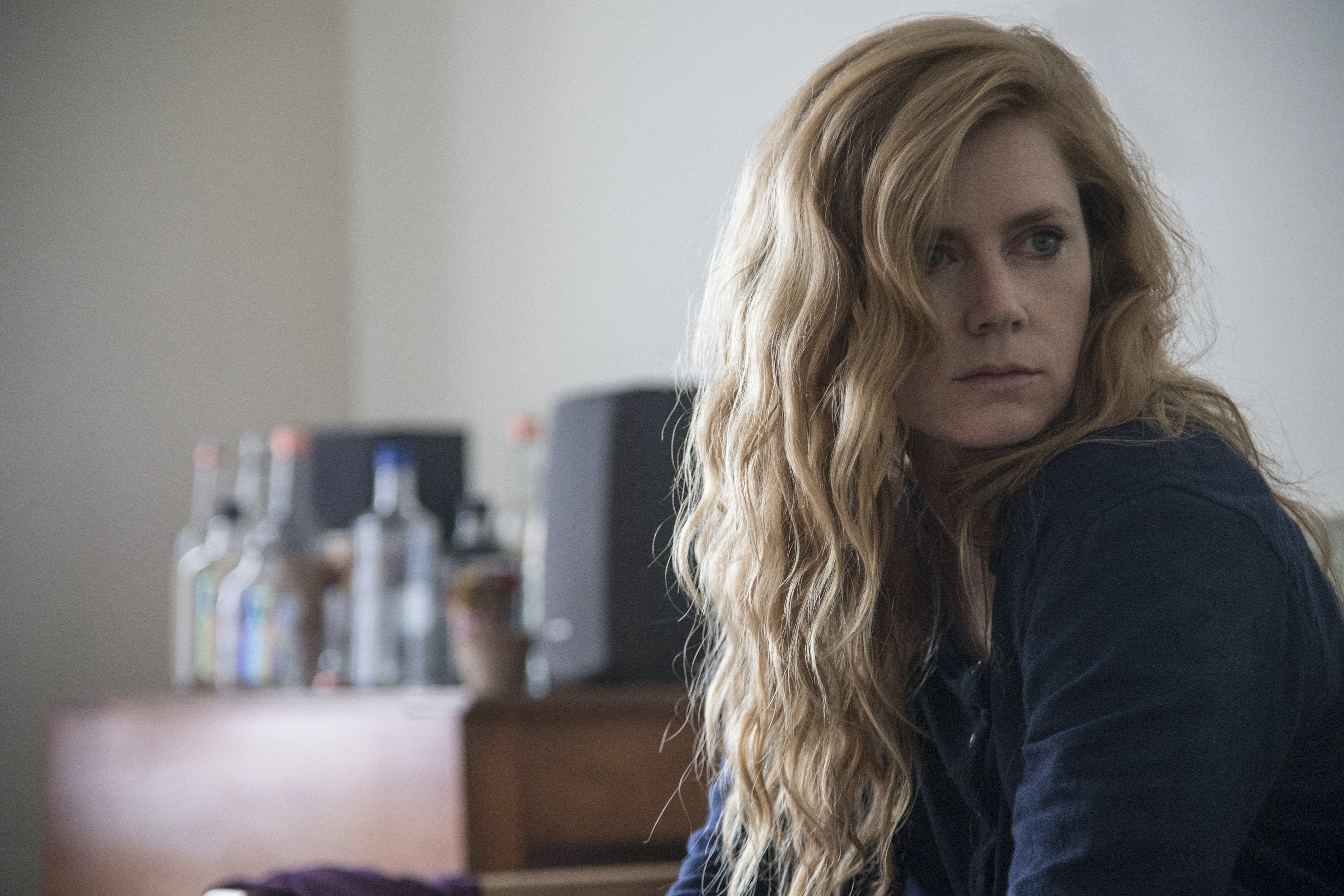 Will There Be A 'Sharp Objects' Season 2? The Author Weighs In