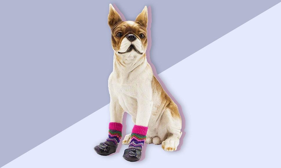 The 6 Best Dog Socks For Hardwood Floors