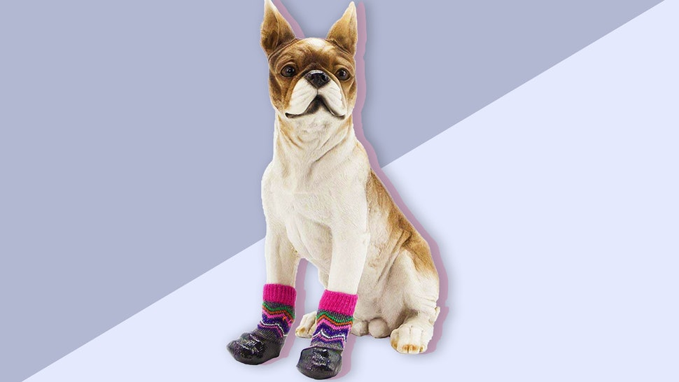The 6 Best Dog Socks For Hardwood Floors 9c2fa3bb13bc