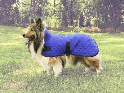 Derby Originals Hyrdo Cooling Dog Vest