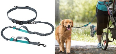 TaoTronics Retractable Hands Free Dog Leash