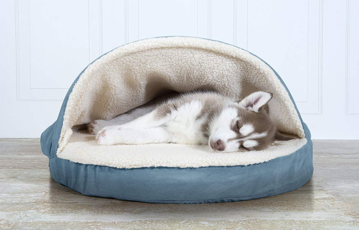 The 6 Best Cheap Dog Beds