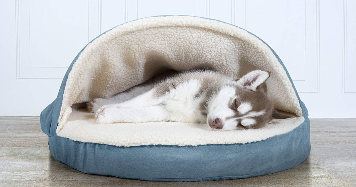 Inexpensive Quality Dog Beds