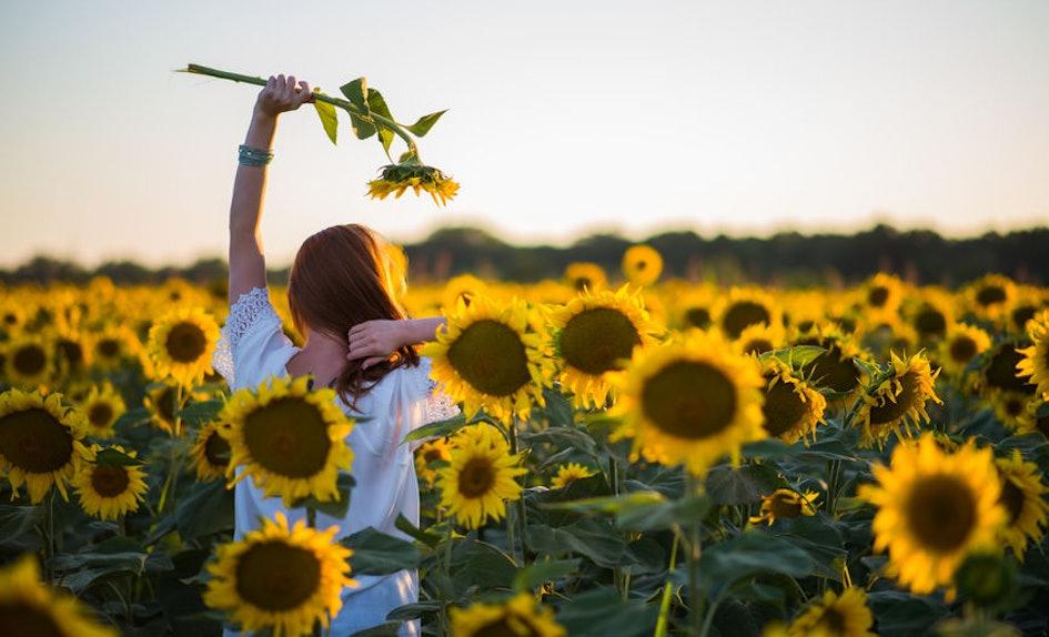 25 instagram captions for flower fields with your best buds mightylinksfo