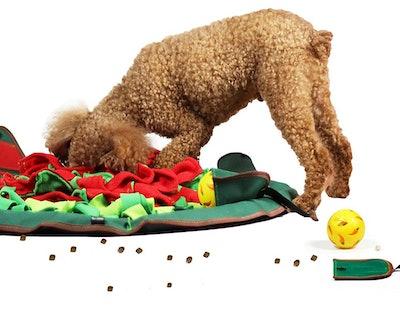 SNIFFiz Dog Food Puzzle Mat