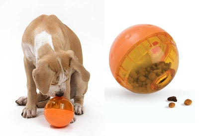 Our Pets IG Treat Ball