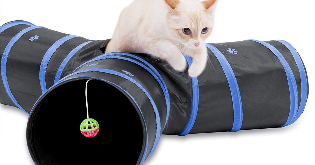 The 8 Best Toys For Cats Home Alone