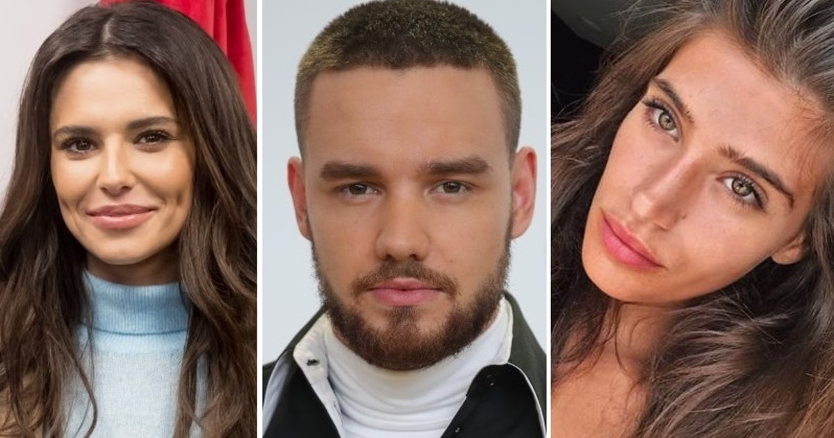 Who is cairo dwek liam payne was spotted getting cozy for Cairo mobel