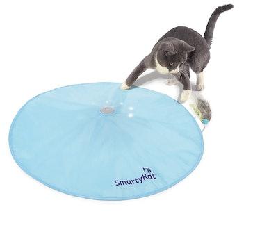 SmartyKat Hot Pursuit Concealed Motion Cat Toy