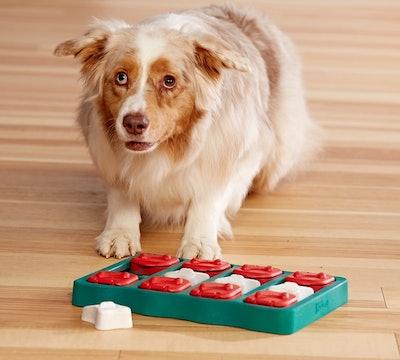Outward Hound Nina Ottoson Dog Treat Puzzle
