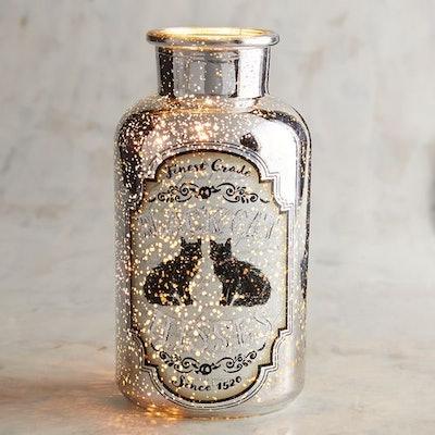 Mercury Glass Bottle Potion Twinkle Light