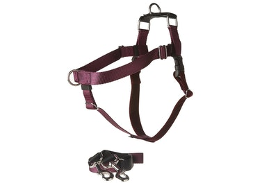 2 Hounds Design Freedom Harness Training Package