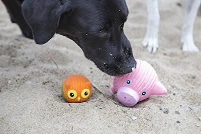 HuggleHounds Ruff-Tex Squeaky Dog Toy