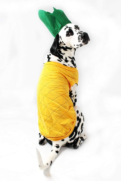 Midlee Pineapple Costume