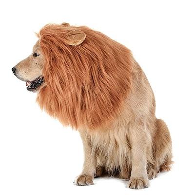 TOMMSENN Dog Lion Mane
