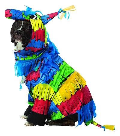 Rasta Imposta Piñata  Dog Costume