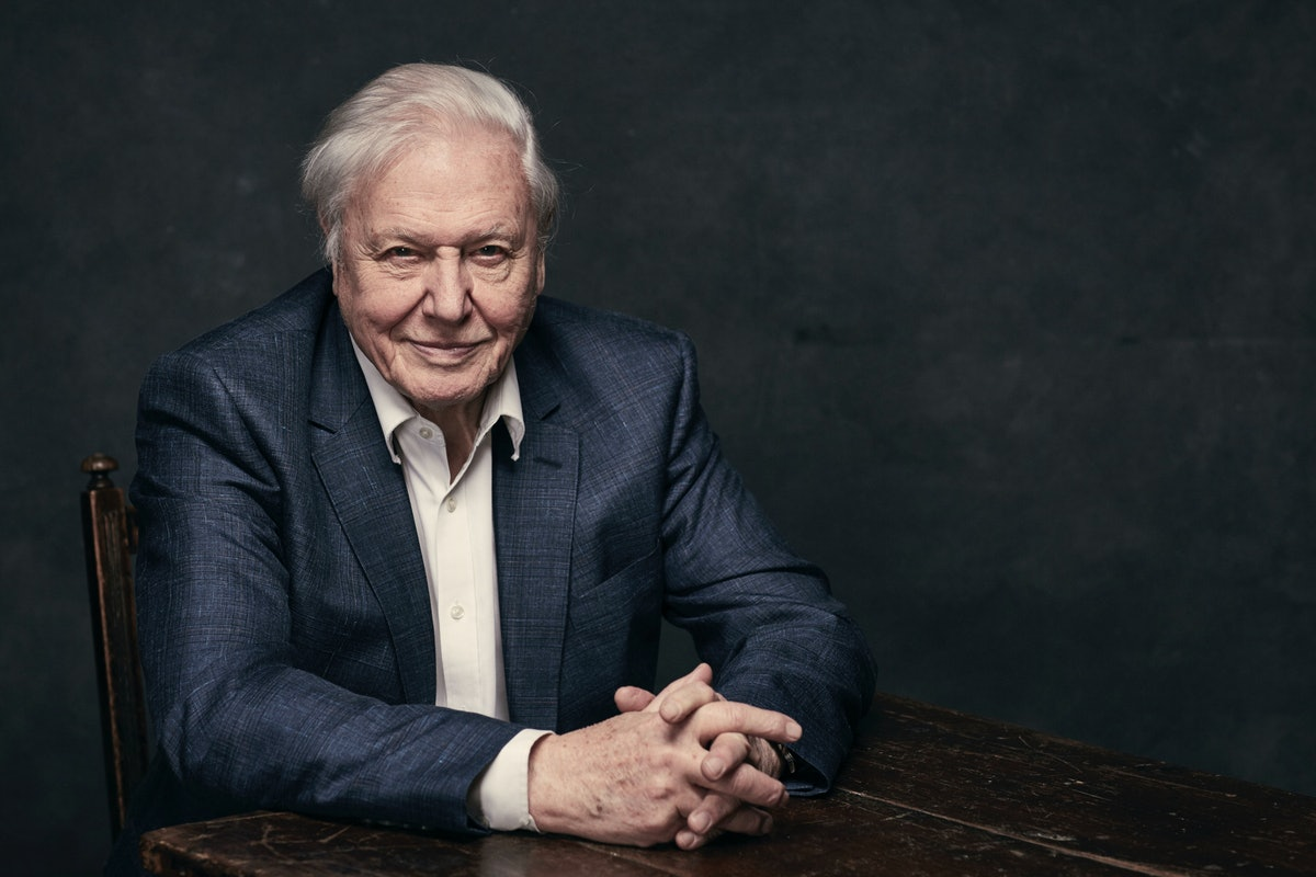 David Attenborough's New Documentary Has Got Everyone Talking For A Very Good Reason