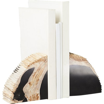 Petrified Wood Bookends Set of Two