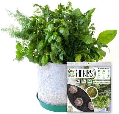 Grow Your Own Herbs Garden Kit