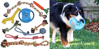 Pacific Pups Products Rope Toys