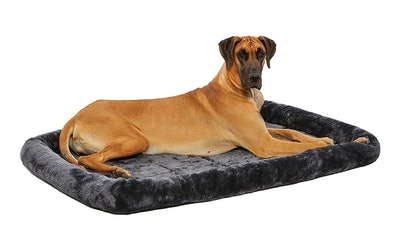 MidWest Homes For Pets Deluxe 54-Inch Pet Bed