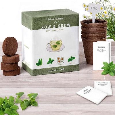 Nature's Bloom Herbal Tea Grow Set