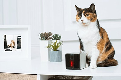Petcube Play Pet Camera With Interactive Laser