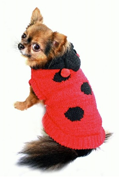 Hip Doggie Lady Bug Dog Sweater