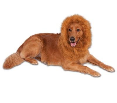 Rubie's Pet Shop Boutique® Halloween Lion Mane Pet Costume