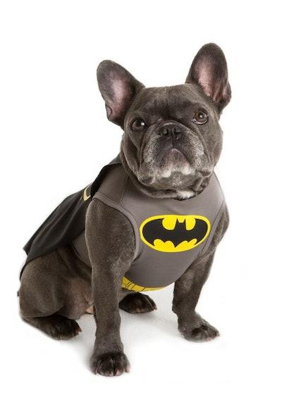 DC Comics™ Batman Pet Costume