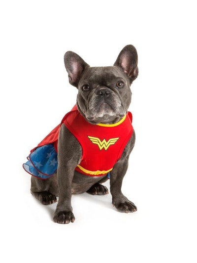 DC Comics™ Wonderwoman Dress Pet Costume