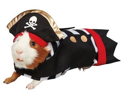 Thrills & Chills™ Pirate Small Pet Costume