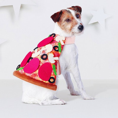 Pizza Dog Costume - Brown - Hyde and Eek! Boutique