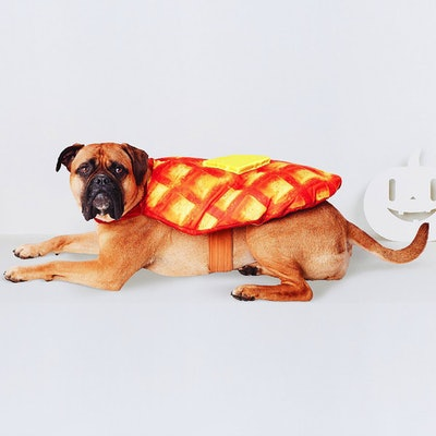 Waffle Dog Costume - Brown/Yellow - Hyde and Eek! Boutique