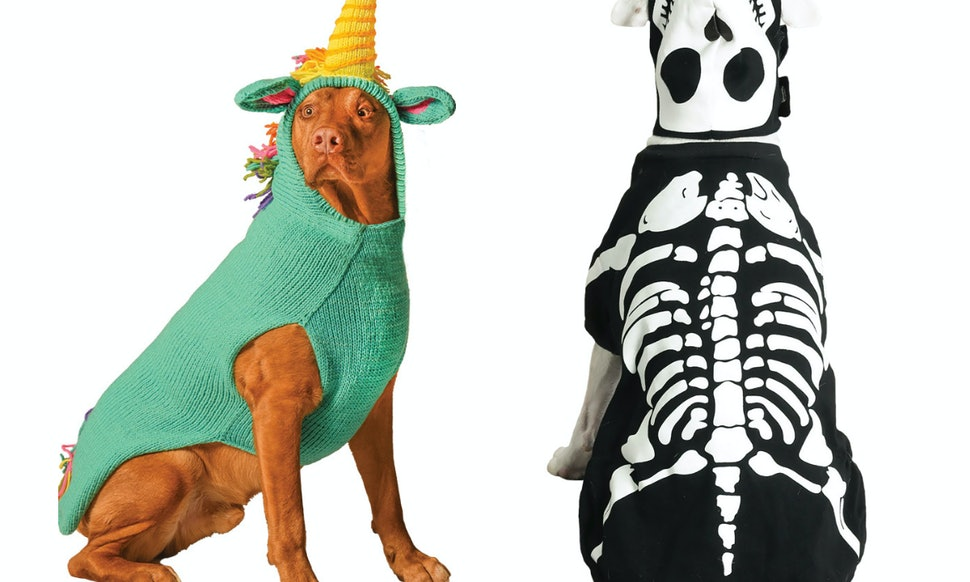 11 halloween 2018 costumes for big dogs that you ll kind of wish