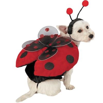 Ladybug With Wings Dog Costume