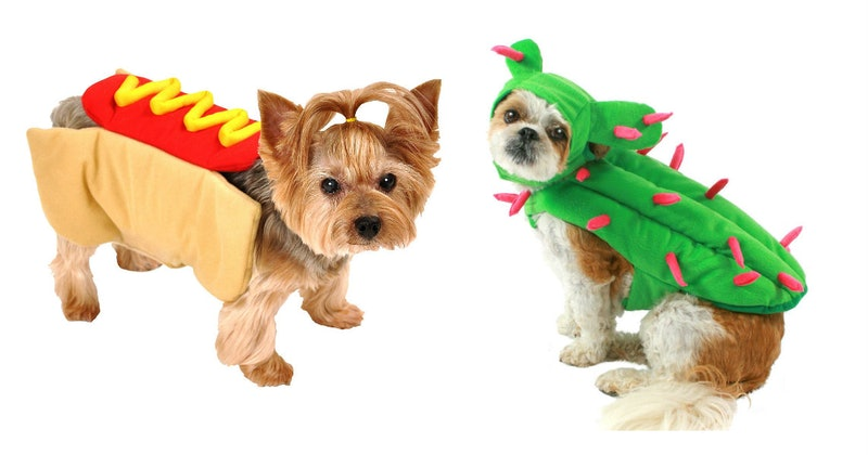 13 Halloween 2018 Costumes For Small Dogs That Are Both Adorable