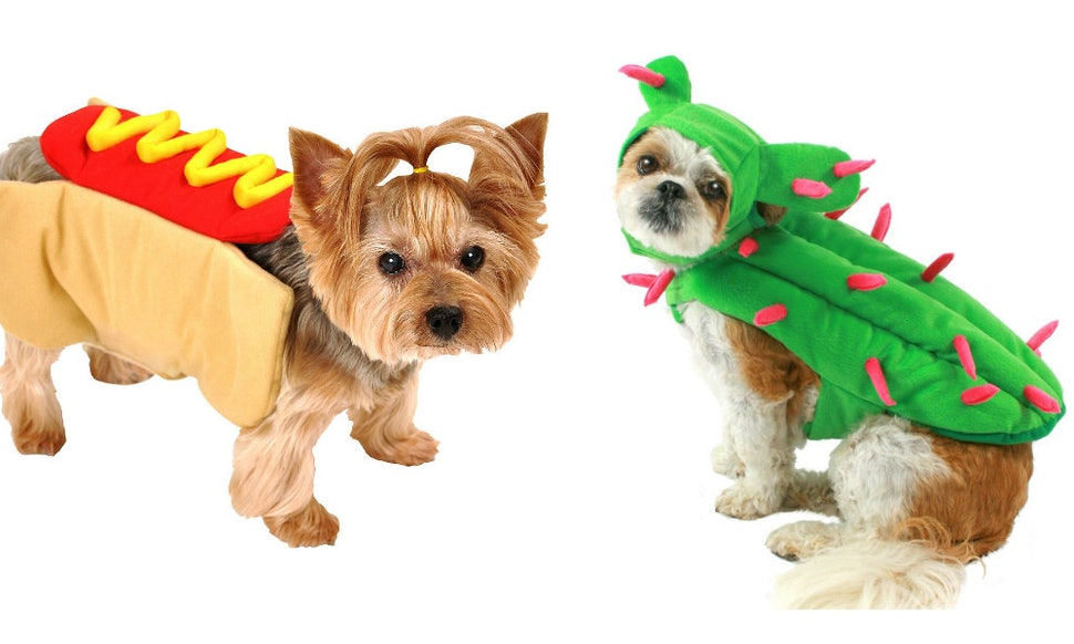 13 halloween 2018 costumes for small dogs that are both adorable affordable