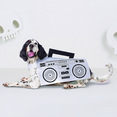 Boombox Dog Costume - Hyde and Eek! Boutique